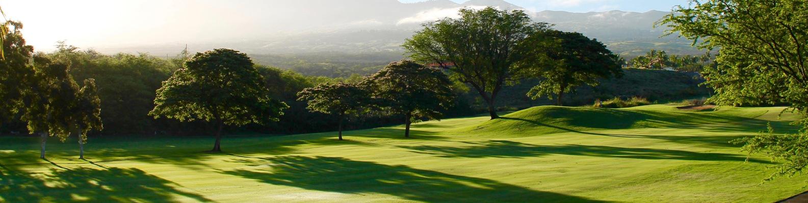 Benefits a Golf Tournament Sponsorship Provides to Business
